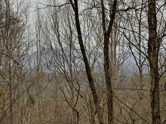 36  Poplar Ridge Lane, Burnsville, NC - USA (photo 5)