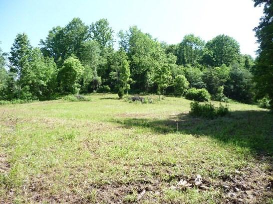 743 Long Branch, Marshall, NC - USA (photo 1)