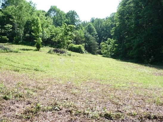 743 Long Branch, Marshall, NC - USA (photo 3)