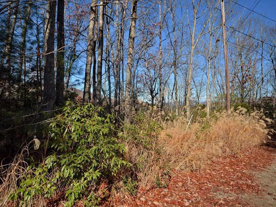 Lot 25 & 26  Laurel Cove Retreat None, Etowah, NC - USA (photo 2)