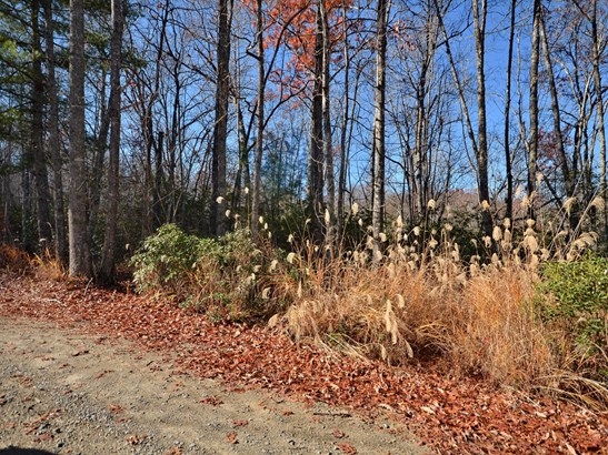 Lot 25 & 26  Laurel Cove Retreat None, Etowah, NC - USA (photo 3)