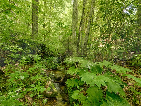 429  Jonathan Trail, Maggie Valley, NC - USA (photo 5)