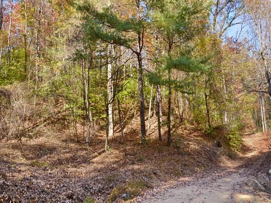 00 Morgan Hill Road, Black Mountain, NC - USA (photo 3)