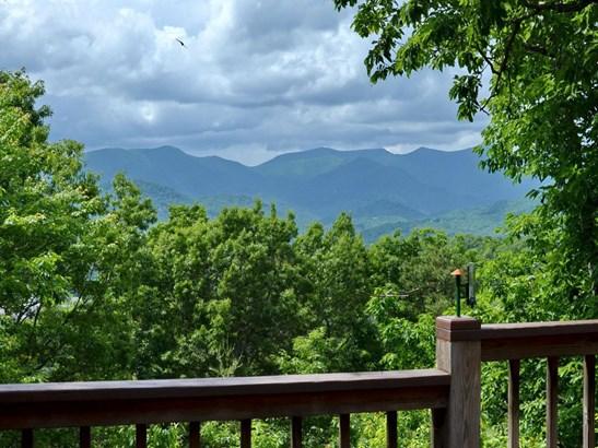 53  Timber Park Drive, Black Mountain, NC - USA (photo 2)