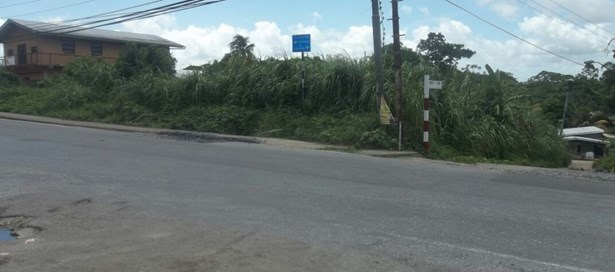 Land For sale Sangre Chiquito (photo 3)