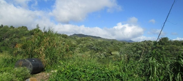 Residential Land For Sale Maraval (photo 2)
