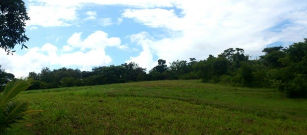 Residential Land For sale Penal (photo 2)