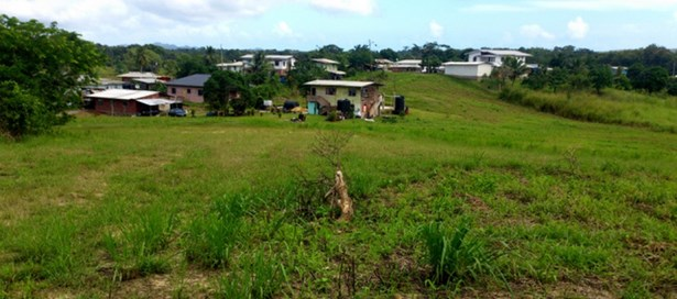Residential Land For sale Penal (photo 5)