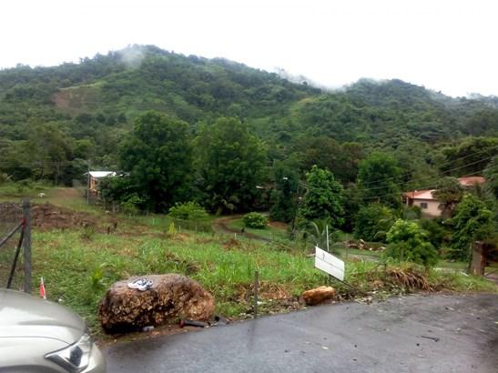 Lovely 1/2 Acre Homestead land, Arouca (photo 2)