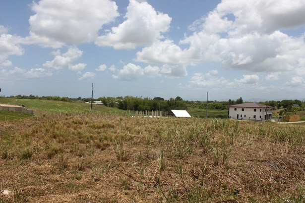 Beautifully landscaped 57,845 square feet parcel of land for sale. (photo 1)