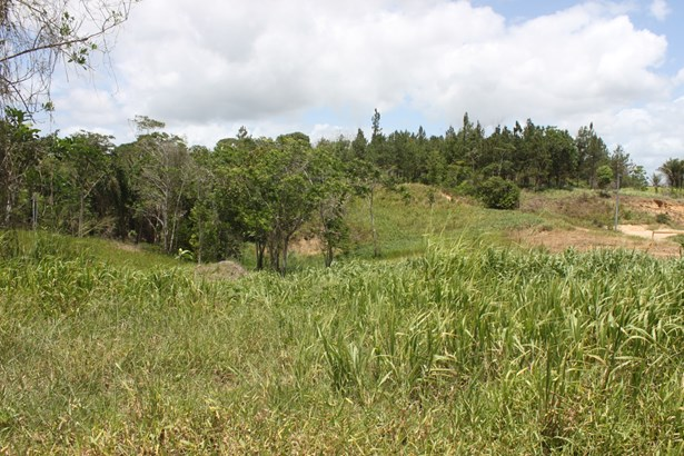 Beautifully landscaped 57,845 square feet parcel of land for sale. (photo 4)