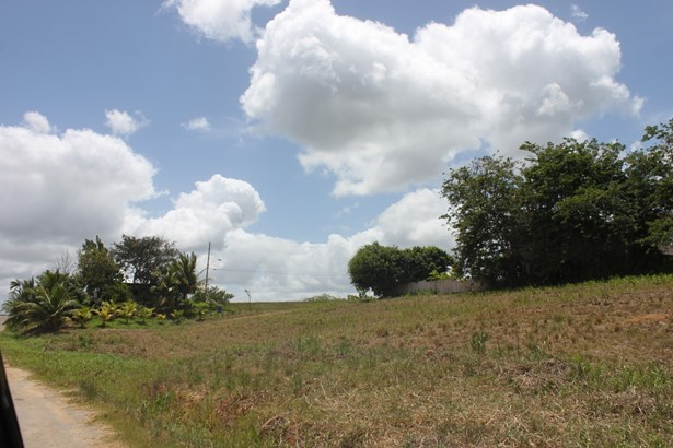 Beautifully landscaped 43,000 square feet parcel of land for sale. (photo 2)
