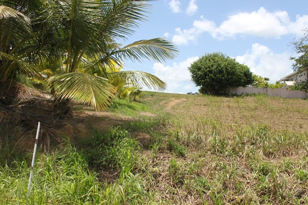 Beautifully landscaped 43,000 square feet parcel of land for sale. (photo 4)