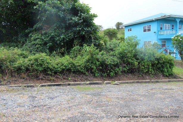 Toco Land for Sale (photo 1)