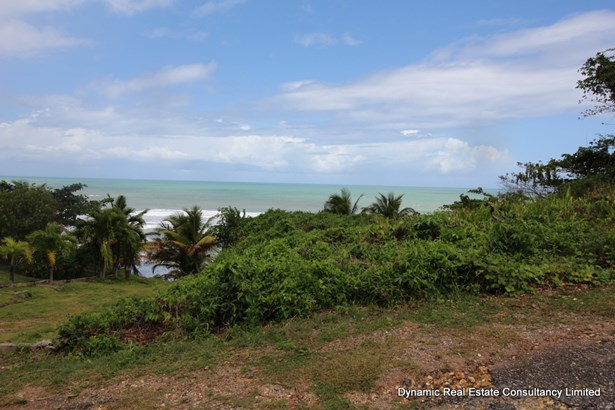Toco Land for Sale (photo 3)