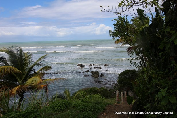 Toco Land for Sale (photo 5)