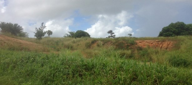 Residential Land For Sale Freeport (photo 3)
