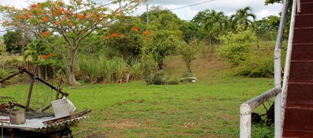 One Storey House For Sale Cocoyea (photo 4)