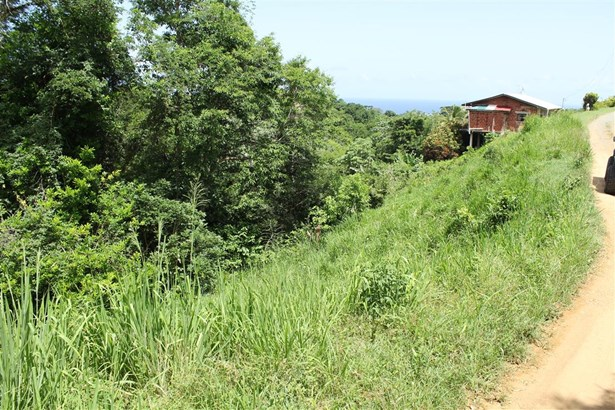 Freehold Land For sale Orange Hill (photo 1)