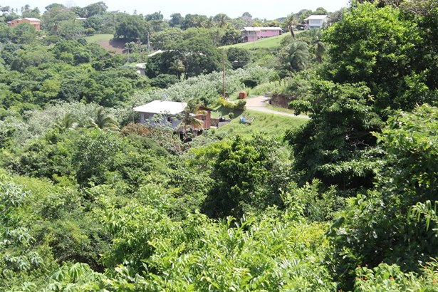 Freehold Land For sale Orange Hill (photo 2)