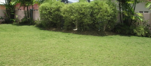 Two Storey House For Rent Arima (photo 3)