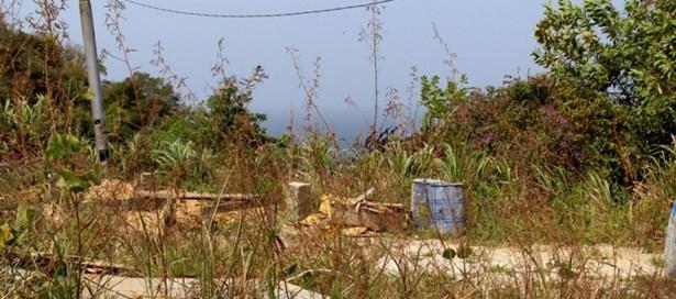 Land For sale Blanchisseuse (photo 4)