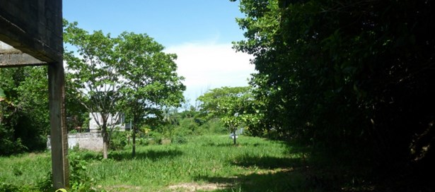 Land For sale Toco