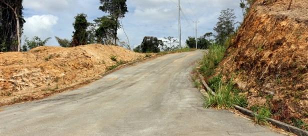 Land For sale Santa Cruz (photo 5)