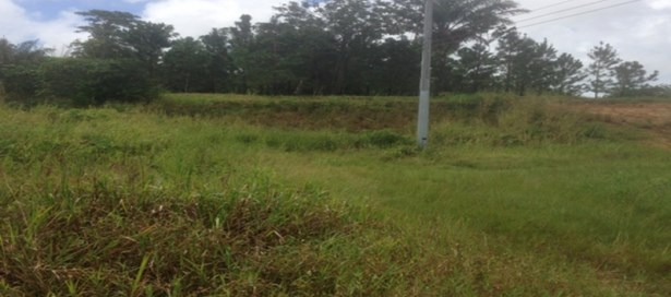 Residential Land For Sale Freeport (photo 1)