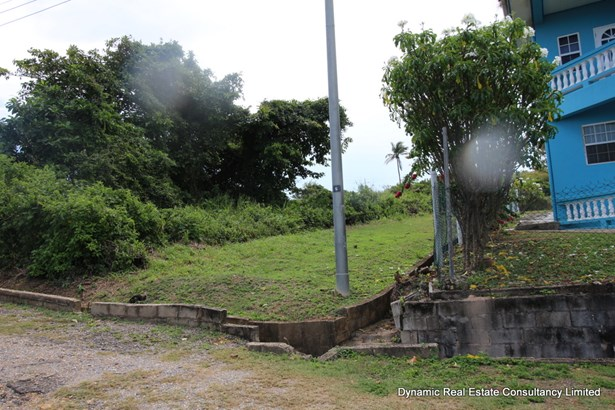 Toco Land for Sale (photo 2)