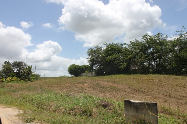 Beautifully landscaped 43,000 square feet parcel of land for sale. (photo 3)