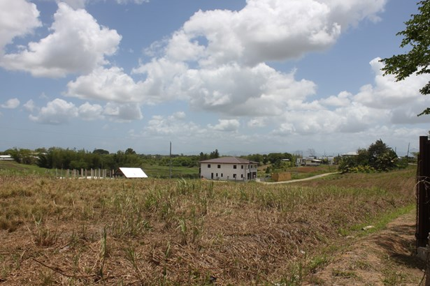 Beautifully landscaped 43,000 square feet parcel of land for sale. (photo 5)