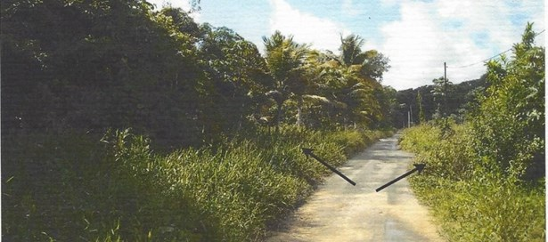 Agricultural Land For Sale Arima (photo 1)