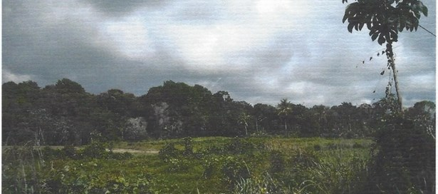 Agricultural Land For Sale Arima (photo 2)