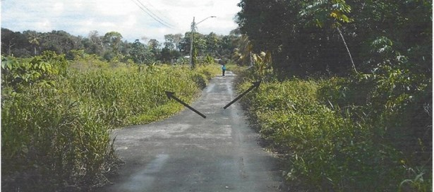 Agricultural Land For Sale Arima (photo 5)