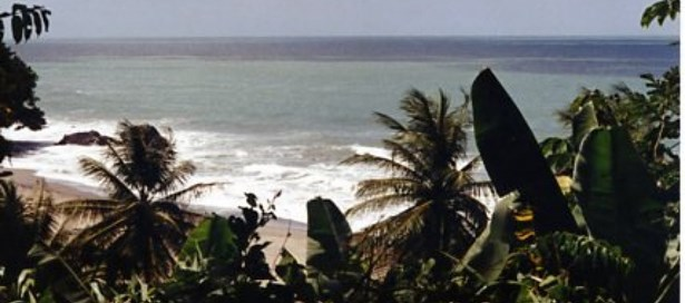 Land For Sale Toco (photo 4)