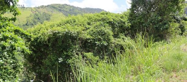 Land For Sale Cascade (photo 4)