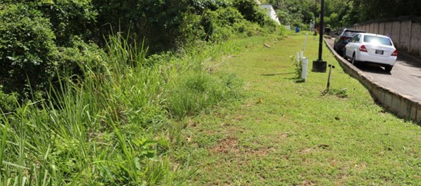 Land For Sale Cascade (photo 5)