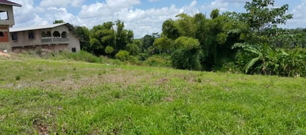 Freehold Land For sale Princes Town