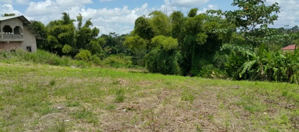 Freehold Land For sale Princes Town (photo 2)