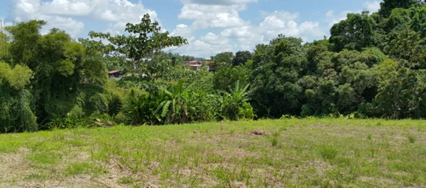 Freehold Land For sale Princes Town (photo 4)