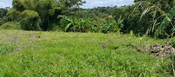Freehold Land For sale Princes Town (photo 5)