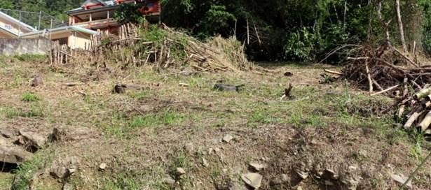 Residential Land For sale Hillsboro (photo 2)