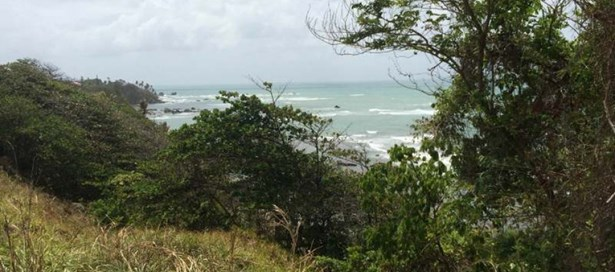 Land For Sale Toco (photo 5)