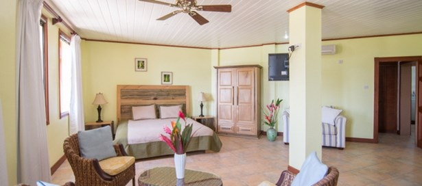 Villa For sale Gros Islet (photo 4)