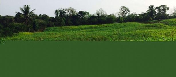 Land For sale Freeport (photo 1)