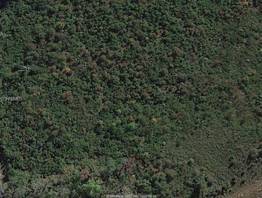 Land/Lots - Fairfax, SC (photo 2)