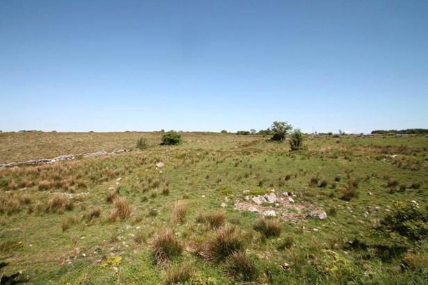 Lands At Barnacogue, Knock - IRL (photo 1)