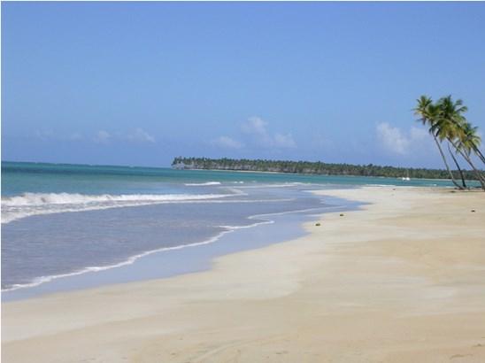 Coson, Samana - DOM (photo 2)