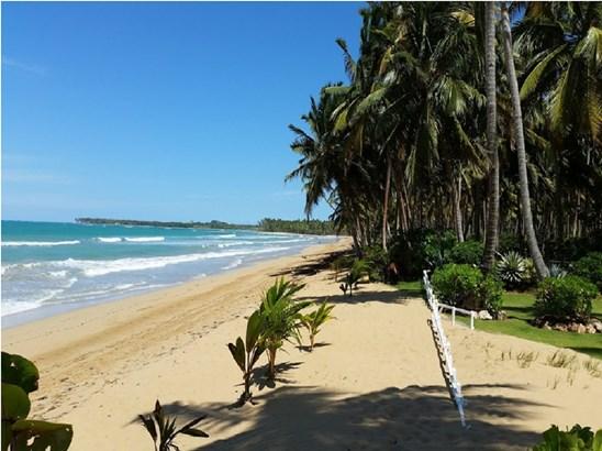 Coson, Samana - DOM (photo 3)